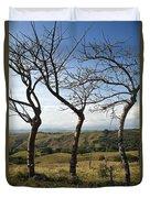 Lush Land Leafless Trees Iv Duvet Cover