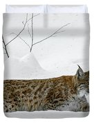 Lynx Hunting In The Snow Duvet Cover