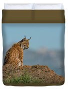 Lynx In Profile On Rock Looking Down Duvet Cover