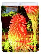 Madeira Funchal  Tritoma, Red Hot Poker, Torch Lily, Poker Plant Duvet Cover