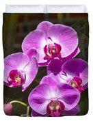 Magenta Orchids Duvet Cover
