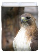 Magnificent Red-tailed Hawk  Duvet Cover