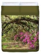 Magnolia Plantation's Live Oaks And Azaleas  Duvet Cover