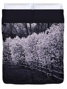 Magnolias In Llewellyn Park, West Orange, New Jersey Duvet Cover