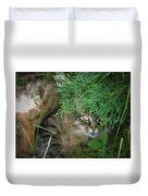 Maine Coon Duvet Cover