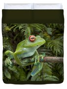 Malagasy Web-footed Frog Boophis Luteus Duvet Cover