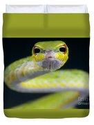 Malayan Vine Snake Duvet Cover