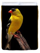 Male American Goldfinch Duvet Cover