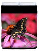 Male Black Swallowtail Butterfly On Echinacea Plant Duvet Cover