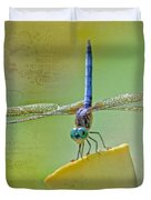 Male Blue Dasher Dragonfly Duvet Cover