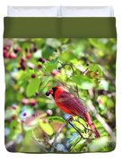Male Cardinal And His Berry Duvet Cover by Kerri Farley