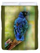 Male Fairy Bluebird Duvet Cover