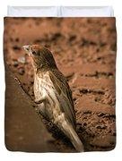 Male House Finch V10 Duvet Cover