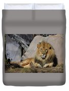 Male Lion Resting In The Warm Sunshine Duvet Cover