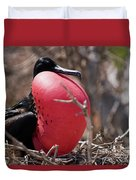 Magnificient Frigatebird  Duvet Cover