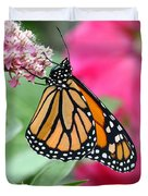 Male Monarch Duvet Cover by Steve Augustin