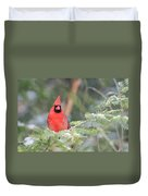 Male Northern Cardinal 2 Duvet Cover