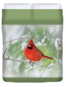 Male Northern Cardinal In Winter - 2 Duvet Cover