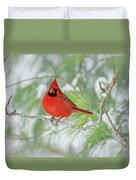 Male Northern Cardinal In Winter Duvet Cover
