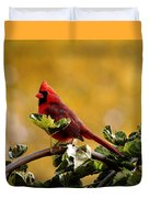 Male Northern Red Cardinal Duvet Cover