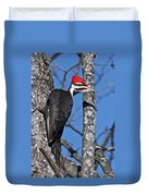 Male Pileated Woodpecker 6340 Duvet Cover