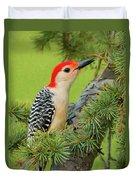 Male Red Bellied Woodpecker In A Tree Duvet Cover