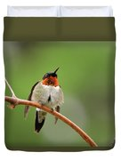 Male Ruby Throated Hummingbird Duvet Cover