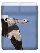 Male Upland Goose Duvet Cover