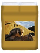 Malibu California Baby Sea Lion Duvet Cover