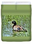 Mallard Duck 1 Duvet Cover