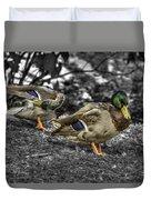 Mallard Duck A4 Duvet Cover