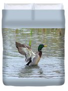 Mallard Duck Landing In Pond Duvet Cover