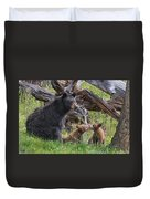Mama Black Bear With Cinnamon Cubs Duvet Cover