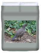 Mama Quail Profile With Ivy Duvet Cover