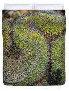Mammillaria Red Cap Cristata Duvet Cover