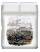 Manatees, Vulnerble Species Duvet Cover