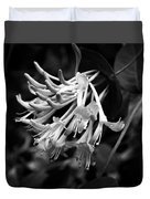 Mandarin Honeysuckle Vine 1 Black And White Duvet Cover