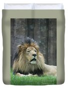 Mane Standing Up Around The Head Of A Lion Duvet Cover