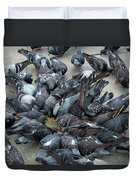 Many Doves At Piazza San Marco Venice Duvet Cover