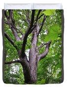 Maple Branches Duvet Cover