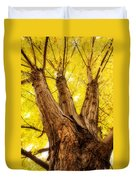 Maple Tree Portrait 2 Duvet Cover