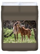 Mare And Colt Duvet Cover