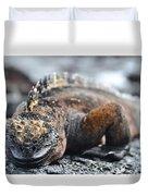 Marine Iguana  Duvet Cover