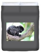 Marmoset Sitting Perched In A Tree Duvet Cover