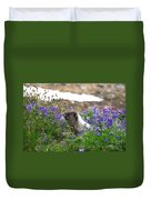 Marmot In The Wildflowers Duvet Cover