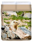 Marmot On Mount Massive Colorado Duvet Cover