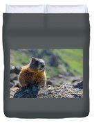 Marmot On The Ridge Duvet Cover