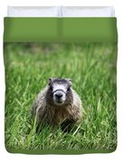 Marmot Pup Duvet Cover