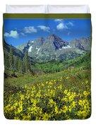 210403-v-maroon Bells And Sunflowers  Duvet Cover
