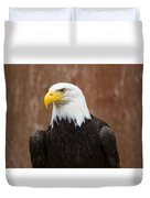 Mature Adult Bald Eagle Duvet Cover